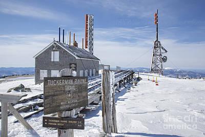 Tuckerman Ravine Trail - Mt Washington New Hampshire Poster by Erin Paul Donovan