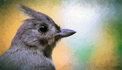 Tufted Titmouse Poster by Diane Giurco