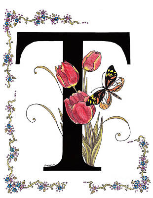 Tulip And Tiger Pierid Butterfly Poster by Stanza Widen