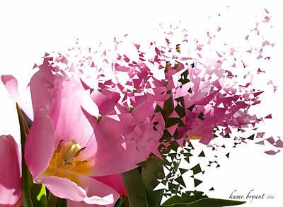Tulip Blast Poster