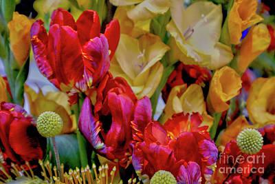 Tulip Bouquet Poster by Sandy Moulder