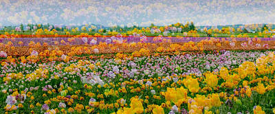 Poster featuring the photograph Tulip Dreams by Tom Vaughan