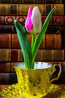 Tulip In A Tea Cup Poster by Garry Gay