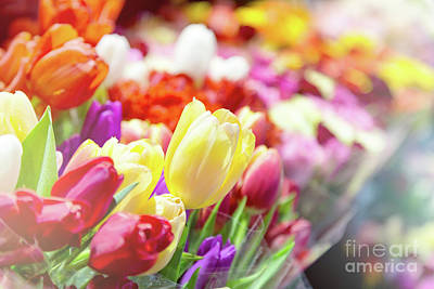 Tulips At A Flower Market Poster