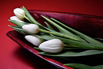 Tulips II Poster by Tom Mc Nemar