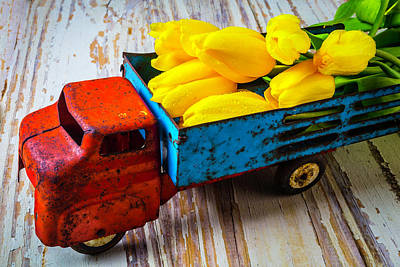 Tulips In Toy Truck Poster by Garry Gay