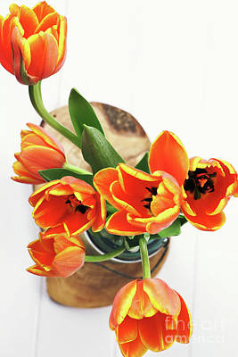 Poster featuring the pyrography Tulips by Stephanie Frey