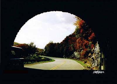 Poster featuring the photograph Tunnel Vision by Seth Weaver