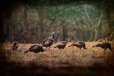 Turkey Day At Grandpas Farm Poster by Jai Johnson