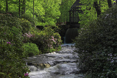 Poster featuring the photograph Turkey Hill Brook In Moore State Park by Juergen Roth