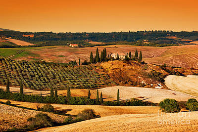 Tuscany Landscape At Sunset Poster