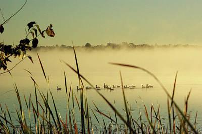 Twenty Geese On Loughborough Lake Poster