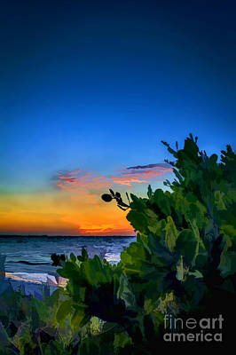 Twilight Mangrove Poster by Marvin Spates
