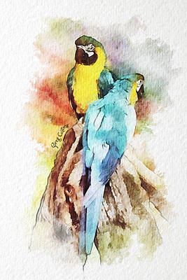 Twin Parrots Poster