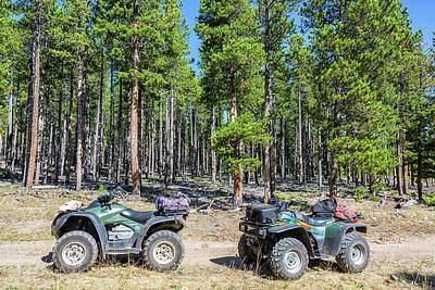 Two Atvs In A Forest Poster by Jess Kraft