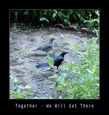 Poster featuring the photograph Two Birds Blue by Felipe Adan Lerma