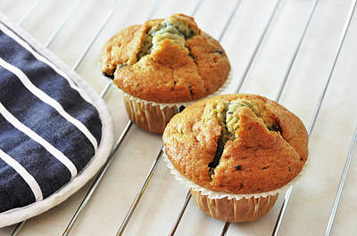 Two Blueberry Muffins Poster