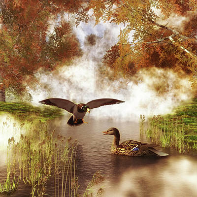 Two Ducks In A Pond Poster