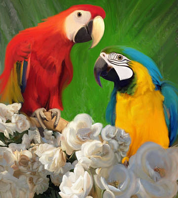 Two Parrots And White Roses Poster