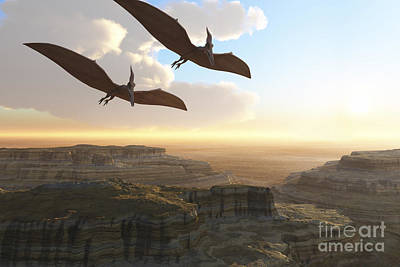 Two Pterodactyl Flying Dinosaurs Soar Poster
