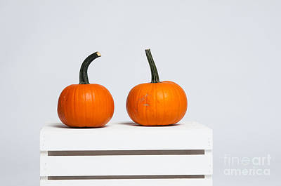 Two Pumpkins Poster by Sian Cox