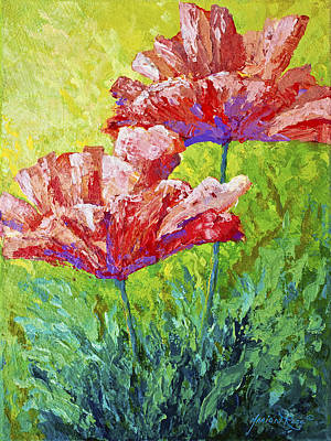 Two Red Poppies Poster by Marion Rose