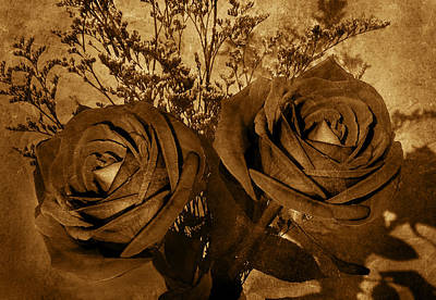 Two Roses Poster by Kathleen Stephens