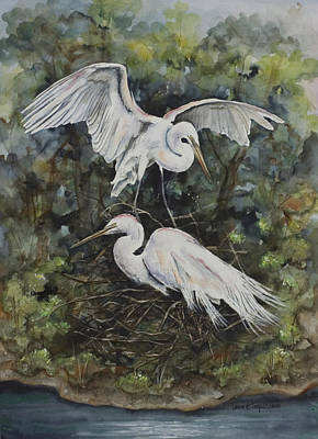 Two Snowy Egrets Poster