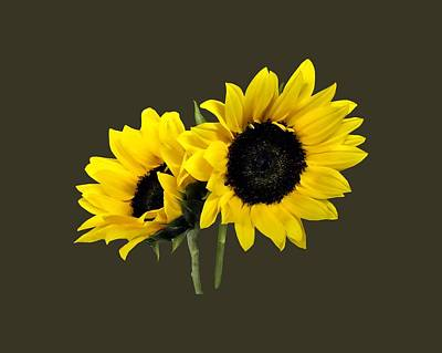 Two Sunflowers Poster by Susan Savad