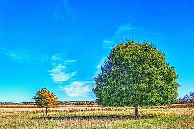 Two Trees On The Illinois Prairie Poster