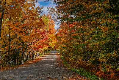 Typical Vermont Dirve - Fall Foliage Poster