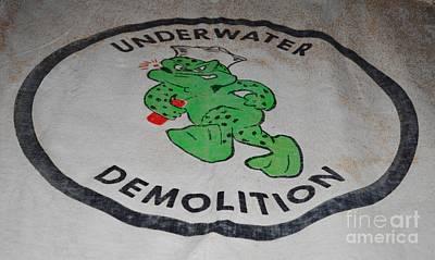 Udt Frogman Flag Poster