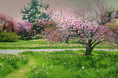 Poster featuring the photograph Under The Cherry Tree by Diana Angstadt
