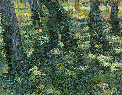 Undergrowth Poster by Vincent van Gogh