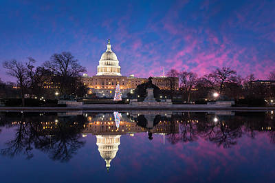 United States Capitol Building Christmas Tree Reflections Poster