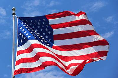 Poster featuring the photograph United States Flag by Elizabeth Budd