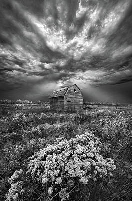 Unsettled Poster by Phil Koch
