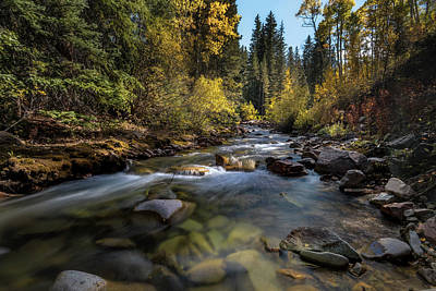 Up A Colorado Creek Poster