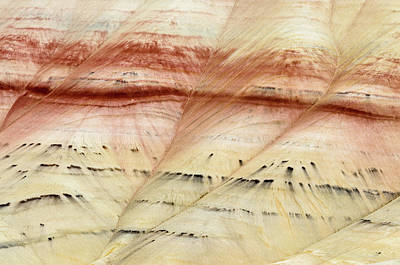 Up Close Painted Hills Poster by Greg Nyquist