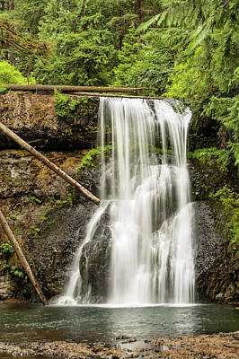 Upper North Silver Falls Vertical Poster by Mary Jo Allen