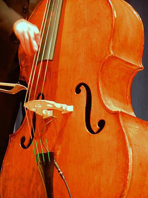 Upright Bass 3 Poster