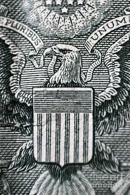 Us Dollar Eagle Poster