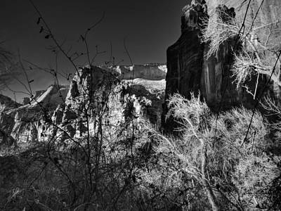 Utah - Zion National Park 003 Bw Poster by Lance Vaughn