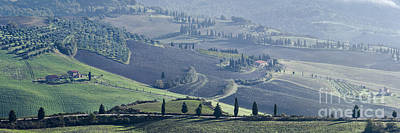 Val D'orcia, Panorama Poster