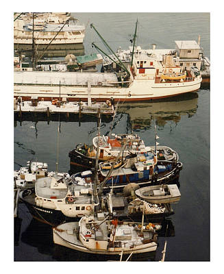Vancouver Harbor Fishin Fleet Poster by Jack Pumphrey