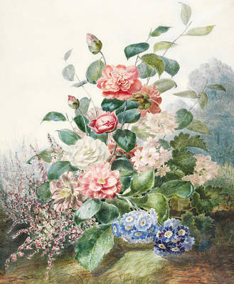 Various Flowers Growing In A Landscape Setting Poster by Antoine Pascal
