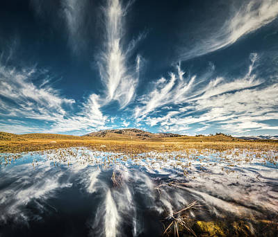 Poster featuring the photograph Veins Of Earth And Sky // Yellowstone National Park  by Nicholas Parker
