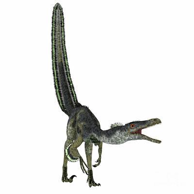 Velociraptor Dinosaur On White Poster by Corey Ford