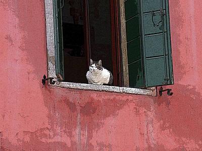 Venetian Cat In Window Poster