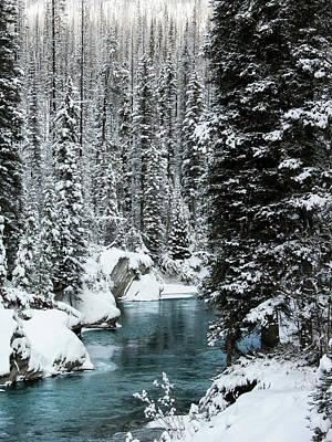 Verdant Creek - Winter 1 Poster by Stuart Turnbull
